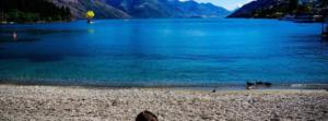 Mole map New Zealand